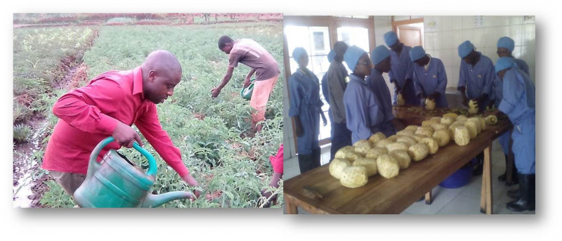 Implication of women and youth in Agri business in Burundi